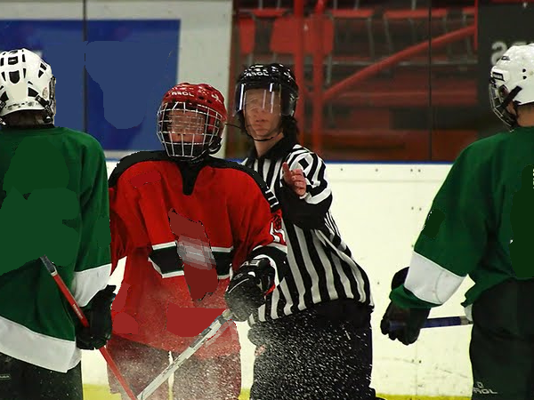 Hockey: Do You Have What It Takes?