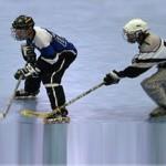 An adult hockey team might have a true puckhog, puck-hog or puck hog.